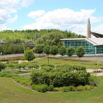 Picture of Trent's vibrant and green campus during a beautiful summer day