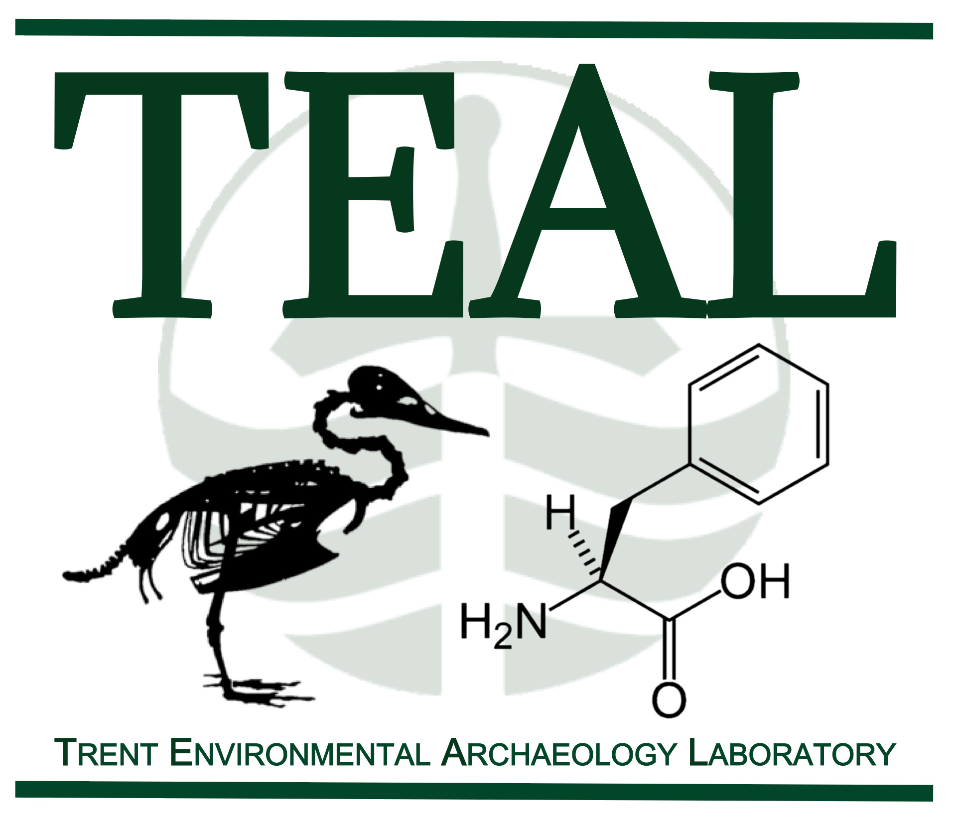 Trent Environmental Archaeology Lab logo
