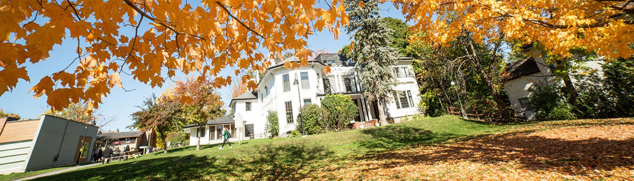 Image of Trent's Catharine Parr Traill campus during the fall.