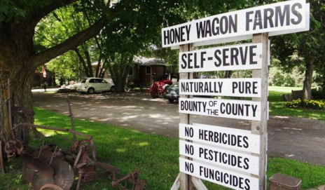 Honey Wagon Farms Picture