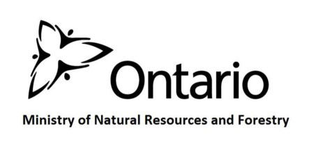 Ministry of Natural Resources and Forestry Logo