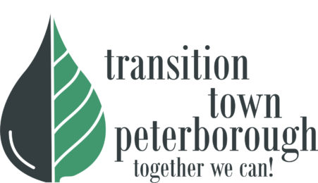 Transition Town Logo of a green leaf