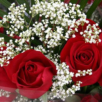 Closeup of a bouquet of flowers containing red roses and small white flowers.