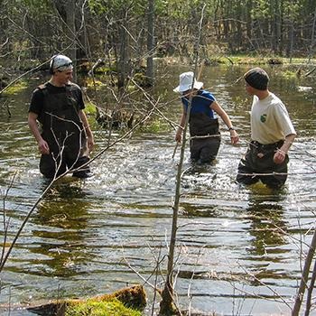3 students in waders walking in a stream in the spring sunshine