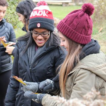 The eco-mentorship program; two girls holding a maple leaf and analyzing it's properties