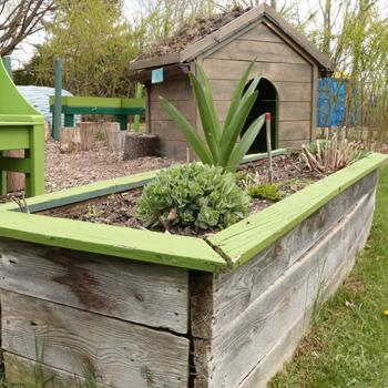 Learning Garden Alt. Placement; pictures is garden box at ecology park in Peterborough