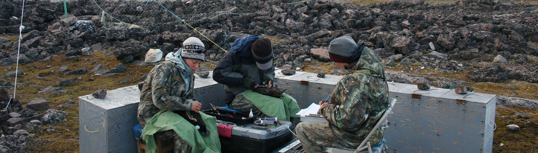 3 students doing fieldwork sitting together recording data / results wearing hats and warm clothing