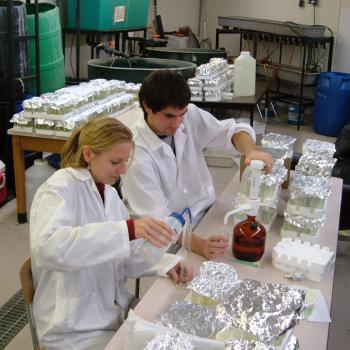 male and female grad students in laboratory working with samples