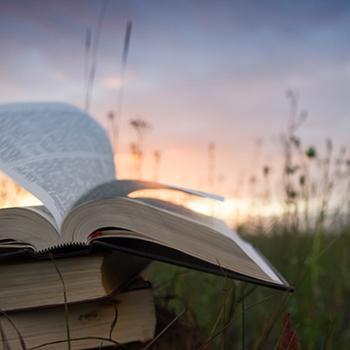 Open book in field