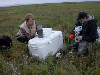 students on the tundra collecting samples with storage cooler