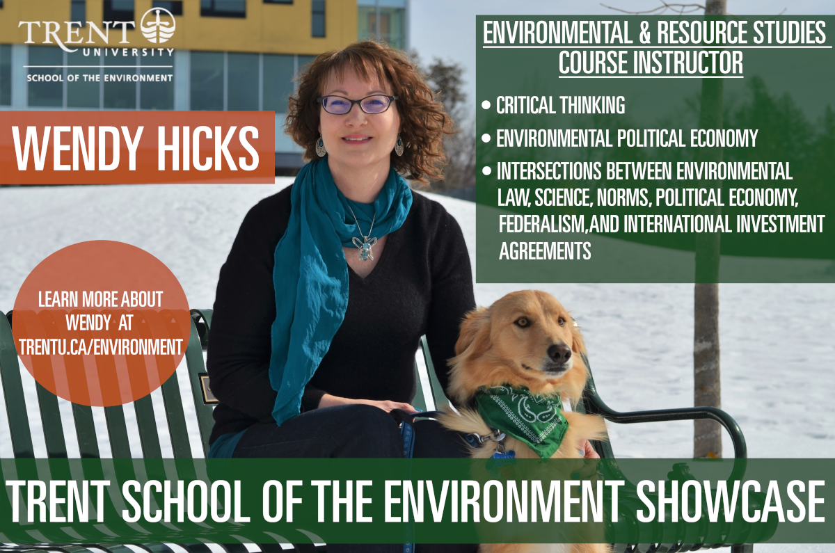 Trent school of the environment showcase poster for Wendy Hicks