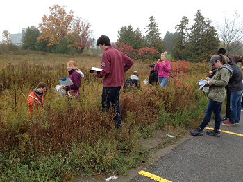 students doing field work on fall day