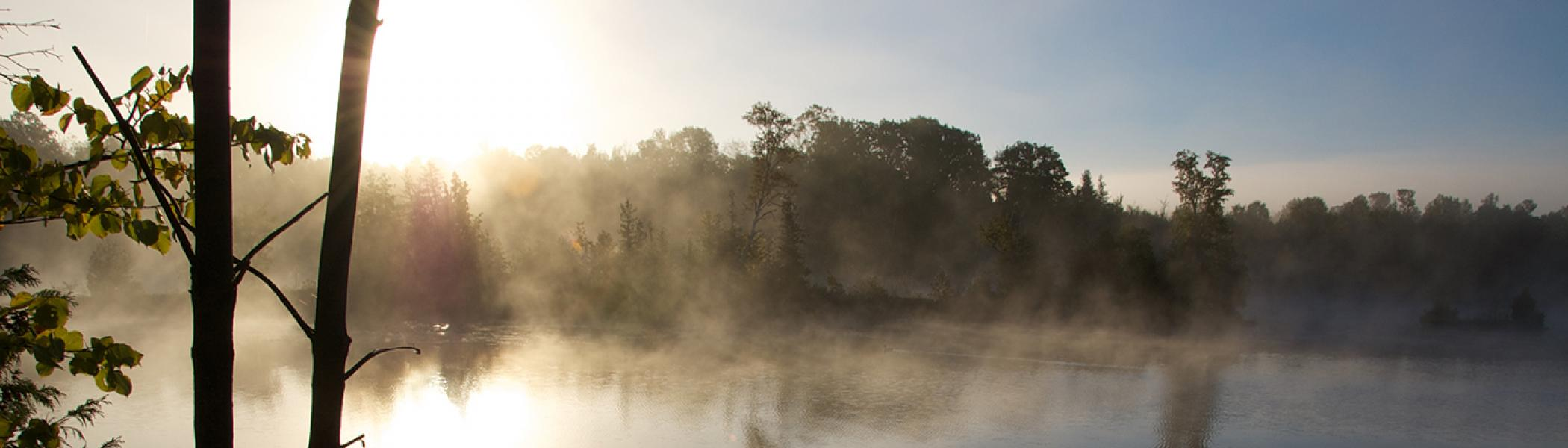 Mist on a lake in the morning summer sun
