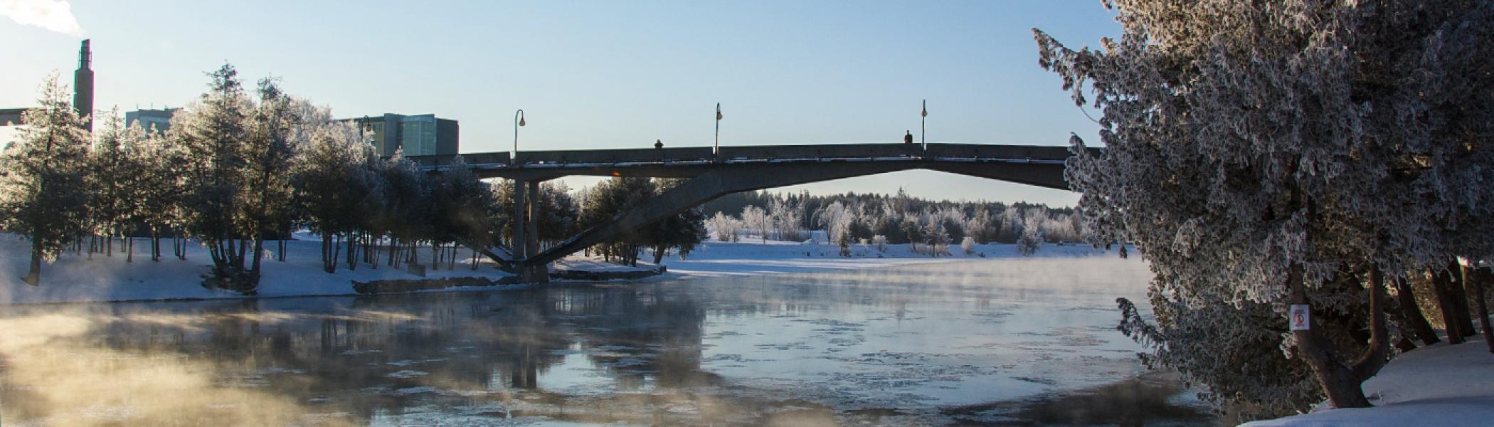 The Faryon bridge across the Otonabee river on a sonwy winter's morning
