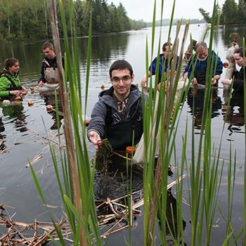 students in river doing sampling looking through tall grass