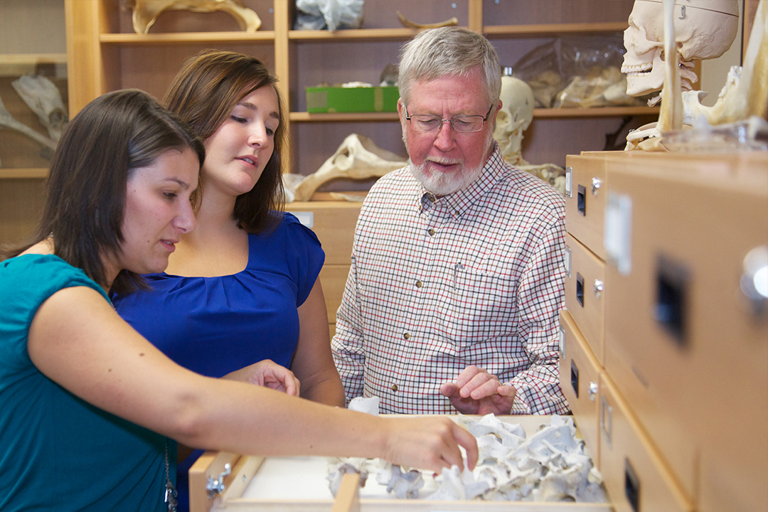 Anthropology students examine artifacts with their professor