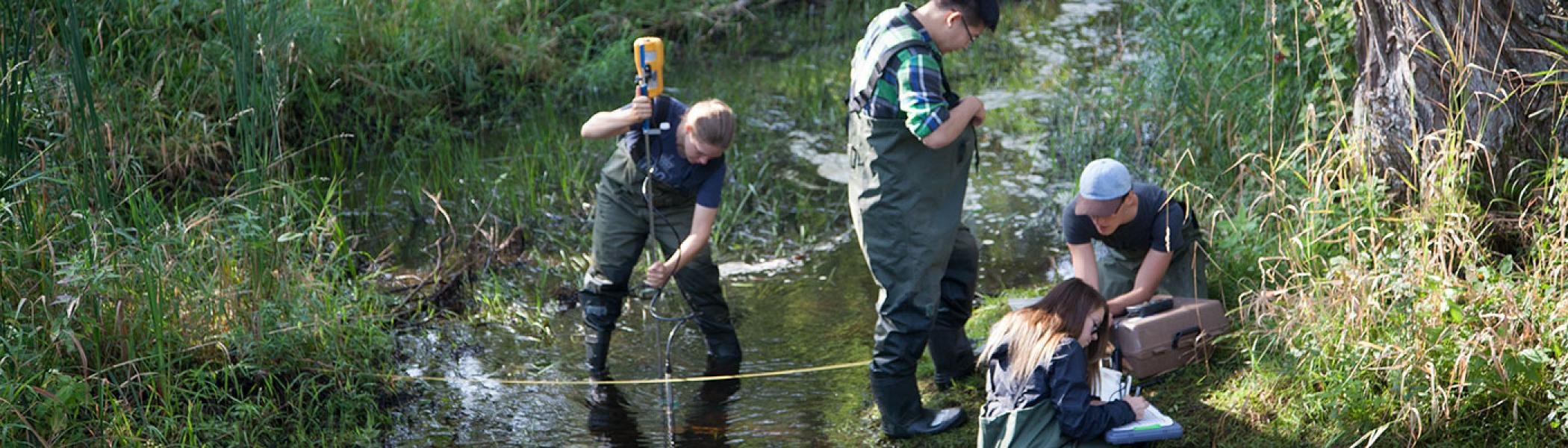 Graduate students in the Environmental Monitoring and Assessment program in a river taking samples