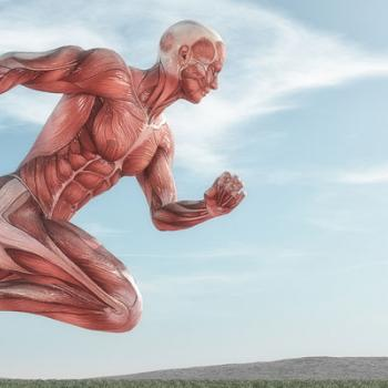 Graphic of male muscular skeletal anatomy in forward running motion