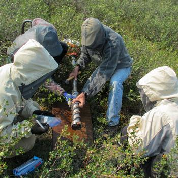 Group of students in body overalls collecting earth samples in the summer sun in a field of grass