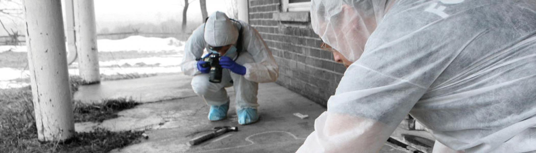 Students investigating a stimulated crime scene