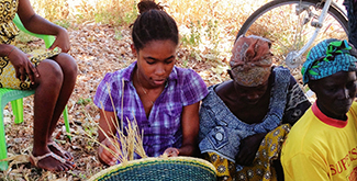 An International Development Student collecting grasses in a whicker basket in Ghana with other local women