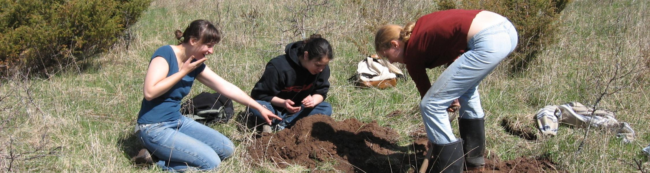 3 female students digging hole in field