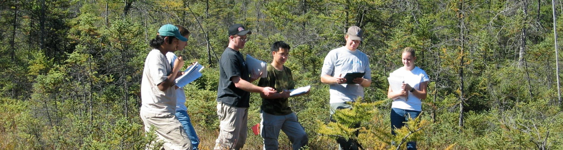 6 students standing in field of trees with clipboards examining tree