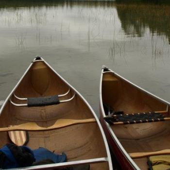 from of 5 canoes in water