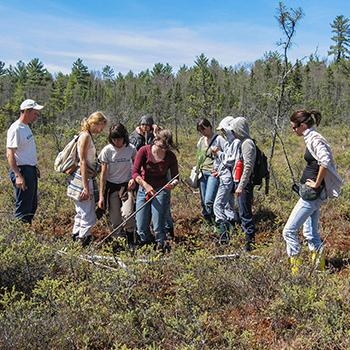 A group of students standing in a wetland taking a sample of earth, dressed in summer clothes