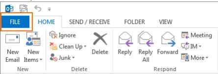 Screen shot showing File tab selected per Step 1