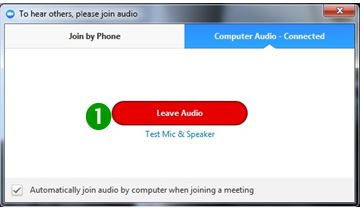 "Screen shot of ""Join by Phone"" tab with Leave Audio selected (one of choices from Step 1)"