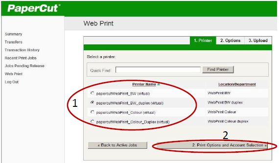 Screen shot of input screen for print type by printer name and the Submit a Job button