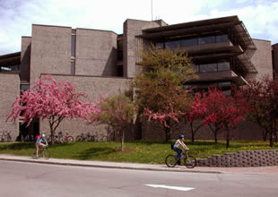 a photo of Bata with spring blossoms and students riding bikes