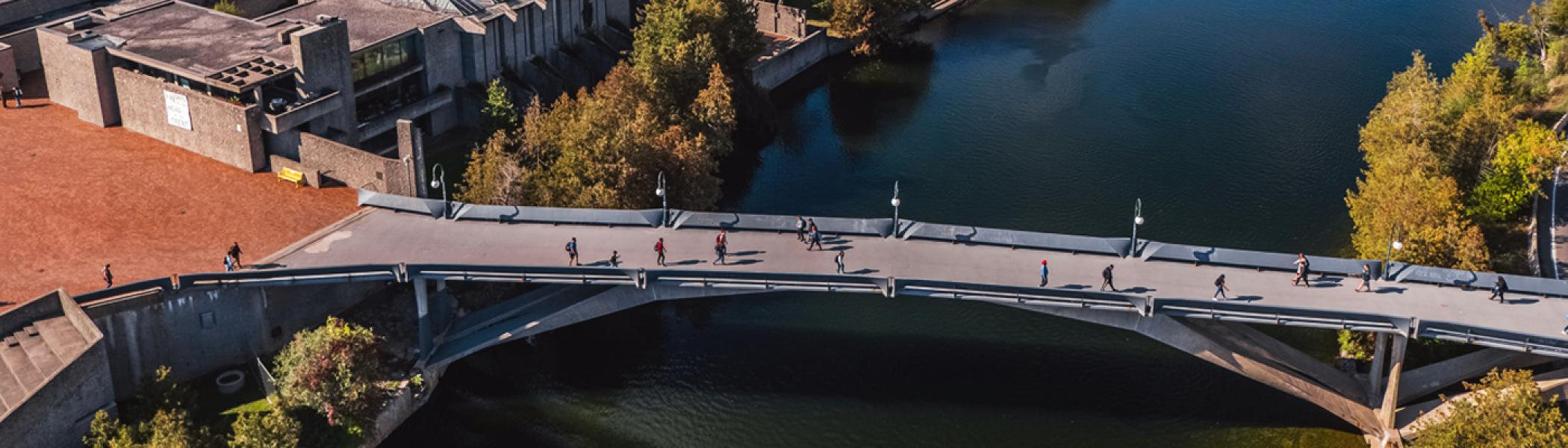Aerial view of students walking across the Faryon Bridge at Trent University in fall.