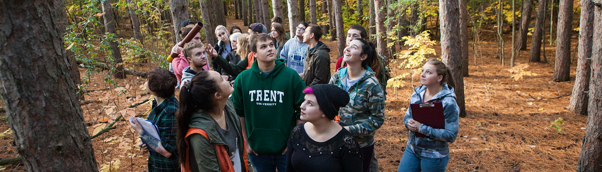 A group of students in the woods looking up at the tree tops, holding their school books