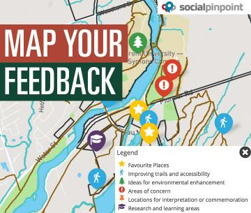 Map Your Feedback